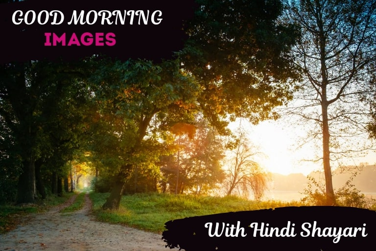 50+ [Sweet] Good Morning Shayari Images in Hindi