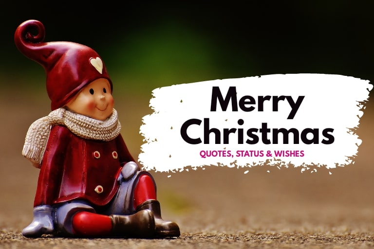 Merry Christmas Wishes, Quotes, Status with Images